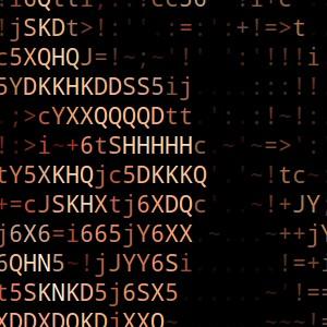 ASCII Palin